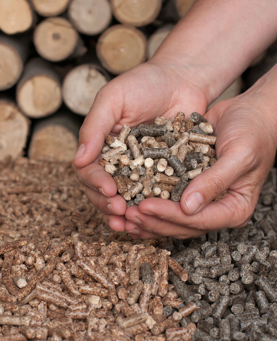 choosing-best-pellets